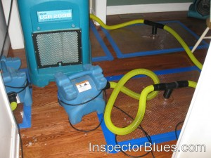 Hardwood Floor Dehumidifier